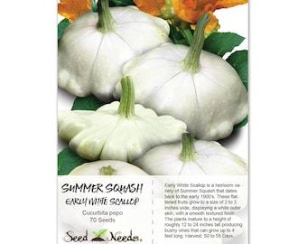 how to cut white scallop squash