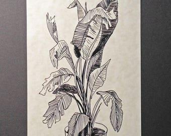 sketchbook print - houseplant 5x7 digital print
