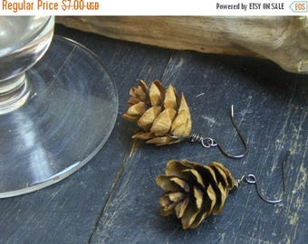 SALE CONIFER. Rustic Real Hemlock Tree Mini Pine Cone earrings. Autumn trends