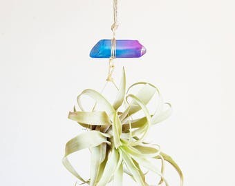 Air Plant Crystal Planter, Cotton Candy Aura Quartz Crystal Airplant Display, Little Something, Hot Pink and Blue, Fun Gift For Teen
