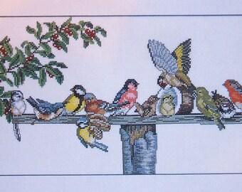 Eva Rosenstand Birds at the Feeder 14-076 Clara Waever Cross Stitch Kit