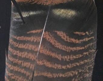 x1 XL Wild Turkey Tail Feather: Brown and Black - meleagris galopavo TT24