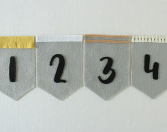 Baby Month Banners (nuetral bundle, gray background)