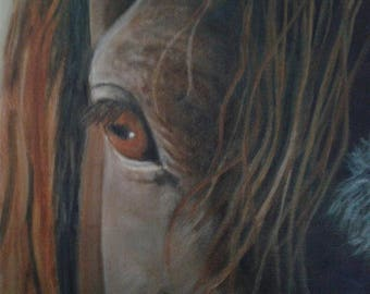 """Horses Eye Painting Horse Head Art Equine Oil Painting Original Oil on 8"""" X 8"""" Canvas Horse Lover Equine Art Eye Painting Horse Painting"""