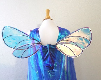 Small Dragonfly Insect Fairy wings Photoshoot Iridescent wings