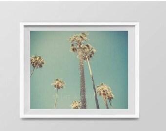 FLASH SALE til MIDNIGHT Palm Trees in Lajolla, Surf Decor,  beach photos, , yellow, turquoise, sunset, retro, vintage surf home decor, boys