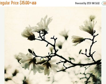 Tree Photo: Indefinable Minute Fine Art Photography Nature Wall Art white magnolia tree Botanical Art Prints Spring