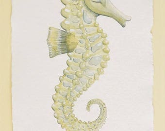Seahorse original watercolour painting illustration sea creature