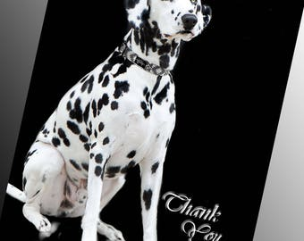 Elegant Card for Vet, Thank You Veterinarian, Thank You Doc, Thank You, Pet Doctor, Dalmatian, Dog, Nature, Black and White