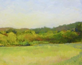 Meadow Light Original Plein Air Landscape Painting Original Oil on Canvas