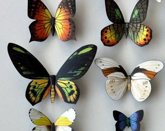 Butterfly Magnets Set of 12 Insects Refrigerator Magnets Kitchen Magnets Multi Color Home Decor Kitchen Decor Butterflies Magnets