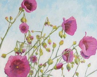 Succulent Prints, Calandrinias, Botanical wall art,succulent flowers on canvas, purple flowers,floral prints,,succulents in gallery wrap