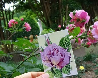ACEO Limited Edition 2/25- Pink rose, Art print of an original watercolor, Small gift idea for her