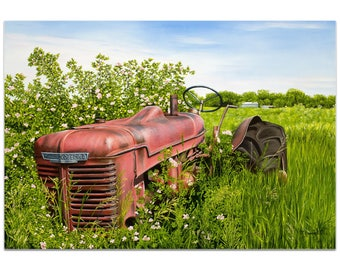 Americana Wall Art 'A Blanket of Roses' by Todd Mandeville - Classic Tractor Decor Country Rustic Farm Landscape on Metal or Plexiglass