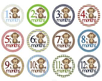 Baby Month Stickers Baby Monthly Stickers Baby Milestone Stickers Baby Stickers Baby Shower Gift Boy