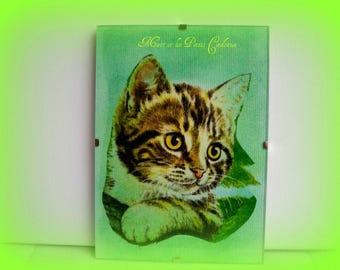 Collage on paper under glass 13 x 18 cm.dans leaves a little cute cat!