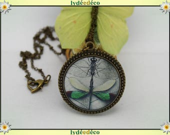 Retro vintage Dragonfly bug green black white and brass Locket 25mm heart clasp ball chain necklace