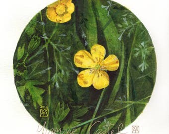 Buttercup - watercolor - circle - spring