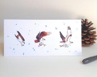 Bird card. Osprey fishing greeting card.