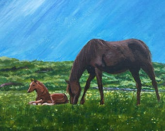 Wild Atlantic Horse and foal