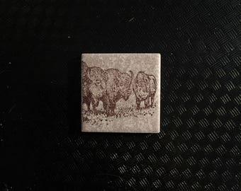 """2""""x2"""" Tile Magnet -- Bison"""