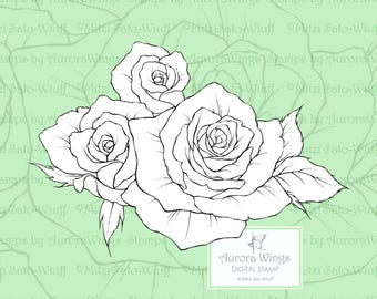 PNG Digital Stamp - Instant Download - Rose Posey - Trio of Rose Blooms with Leaves - Floral Line Art for Cards & Crafts by Mitzi Sato-Wiuff