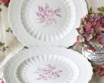 Copeland Spode Billingsley Rose dinner plates