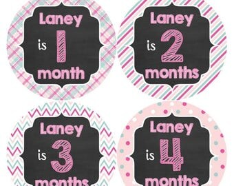 PERSONALIZED Baby Girl Month Stickers Monthly 12 Month Sticker Monthly Baby Stickers Baby Shower Gift Photo Prop Milestone Sticker 486