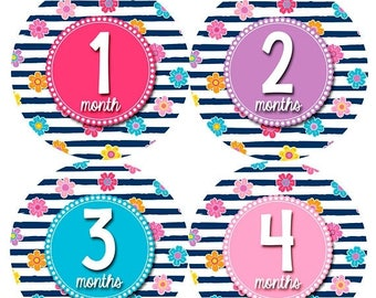 Monthly Baby Sticker Baby Girl | Baby Month Stickers | Baby Milestone Sticker | 12 Month Stickers | Photo Prop | Shower Gift | Floral 1152
