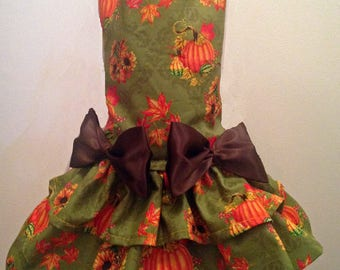 Harvest Autumn Dog Dress
