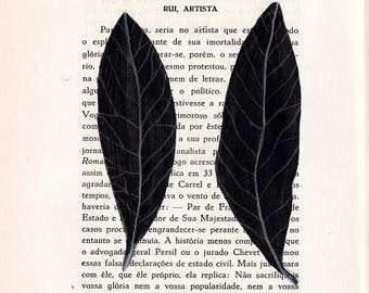leaf C10 & C11 . original drawing by Ana Frois
