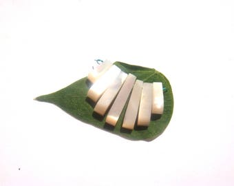 Mother of Pearl: 7 needles 13/22 mm long approx