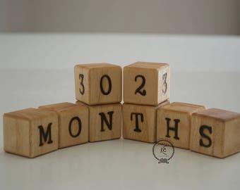 Baby Milestone Block Baby Age Block Pregancy Block Months Week No Sticker