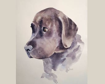 Custom pet portrait, Custom dog portrait, Watercolour, from your photographs. Original art painting. Made to order.