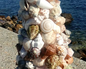 Shell Topiary - SeaShell Topiary - Beach Accent (ST012