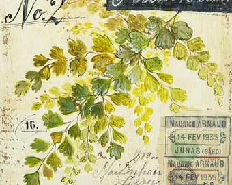 Maidenhair Print, Leaf Illustration, Fern Illustration, Leaf Decor, Leaf Wall Art, Botanical Art, Botanical Illustration, Leaves Print