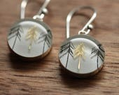 Golden tree earrings made from recycled Starbucks gift cards. sterling silver and resin.