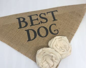 Custom Flower Color Dog Bandana Best Dog Natural Burlap Wedding Collar Girl Flowers Engagement Photos Save the Date Cards