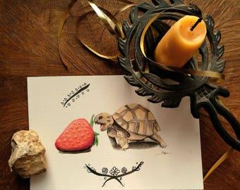 Omnomnom Tortoise - 5x7 print