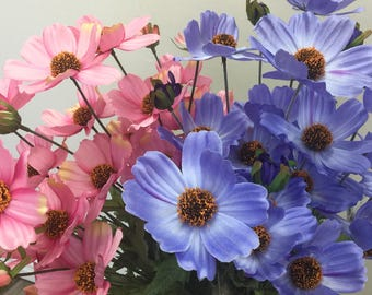 Wholesale Periwinkle and Pink Cosmos Bushes