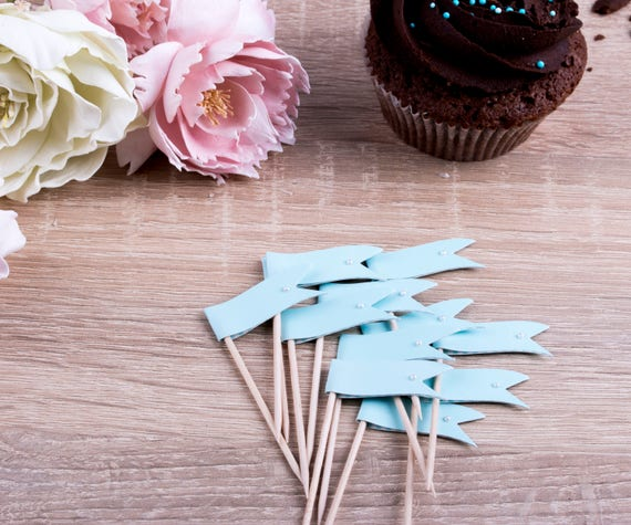 Aqua Blue Cupcake Toppers Party Picks Toothpicks Muffin Picks Wedding Party Decoration Cinderella Party Set of 24 (PT14)