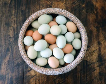 Hand Blow Free Range Chicken Eggs | Light Mix - Blue, Green, Brown, | Primitive, Natural Rustic Farmhouse, Cottage Chic Décor