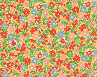 Moda 30s Playtime 33210-13...Sold in continuous cut 1/2 yard increments