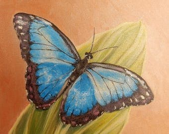Blue Butterfly on Green Leaf ~ Nature ~ Insects ~ Digital Print ~ New Life ~ Sympathy ~ Comfort ~ Symbol of Hope ~ 10 x 10 inches