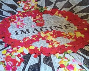 John Lennon Imagine Poster 24 X 36 Memorial Central Park New York Strawberry Fields