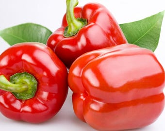 Red bell pepper 450 seeds,organic  Red peppers seeds,non gmo ,greek traditional seeds 2.5gr Approx 450seeds