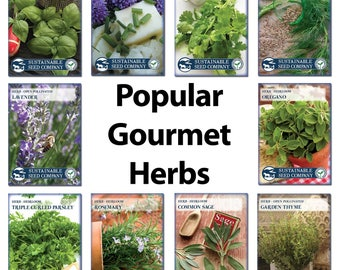 10 of the most POPULAR GOURMET herbs: Basil, Chives, Cilantro, Dill, Lavender, Oregano, Parsley, Rosemary, Sage, and Thyme.