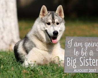 I am Going to be a Big Sister! Personalized Due Date Pregnancy Announcement Sign Photo Prop. Dog Sibling Announcement, Puppy Sibling