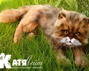 SOLD Cat Lina