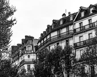Paris Street Photography - Paris Streets - Wall Art Print - Green Trees  - Fine Art Photography  - Springtime in Paris Landscape BW - 0100